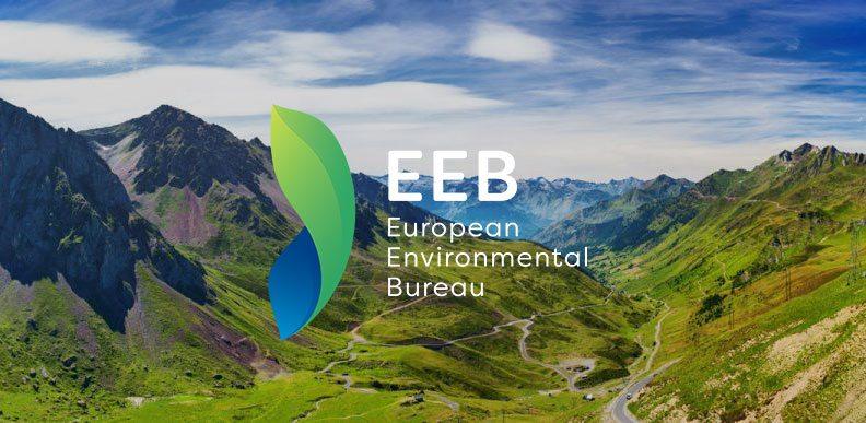Risultati immagini per The European environment